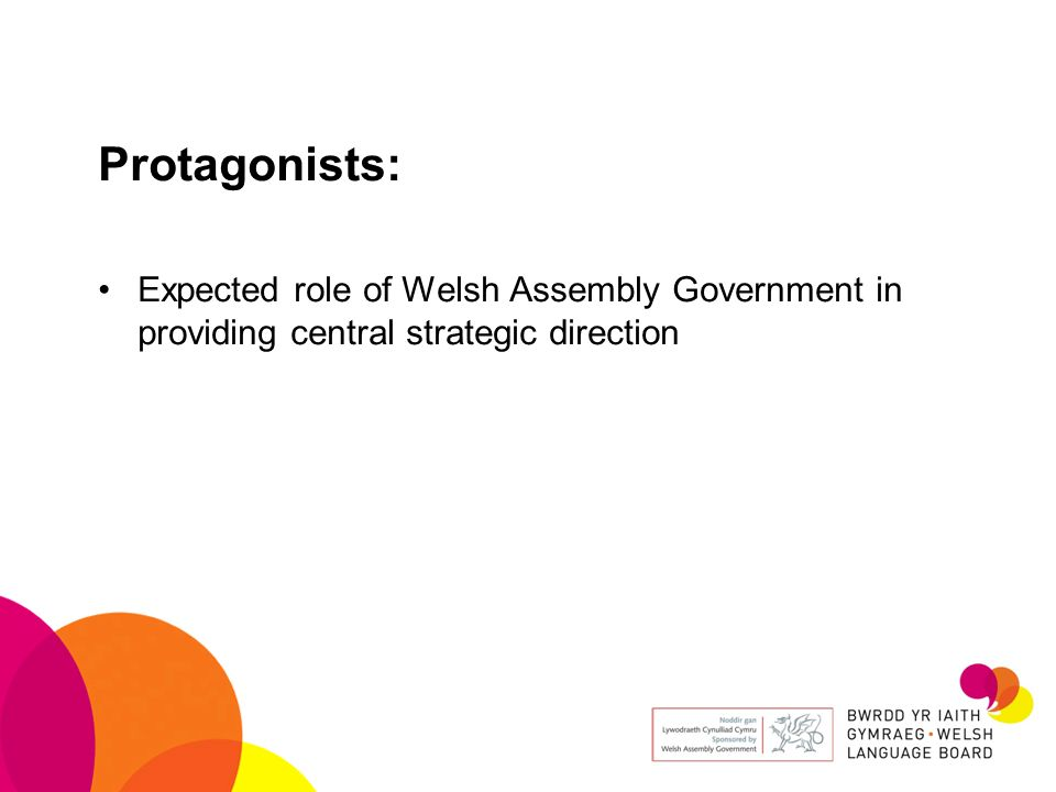 Protagonists: Expected role of Welsh Assembly Government in providing central strategic direction