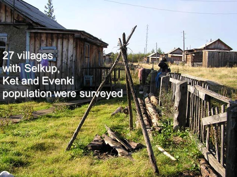 27 villages with Selkup, Ket and Evenki population were surveyed