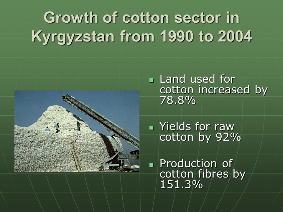 Growth of cotton sector in Kyrgyzstan from 1990 to 2004 Land used for cotton increased by 78.8% Land used for cotton increased by 78.8% Yields for raw