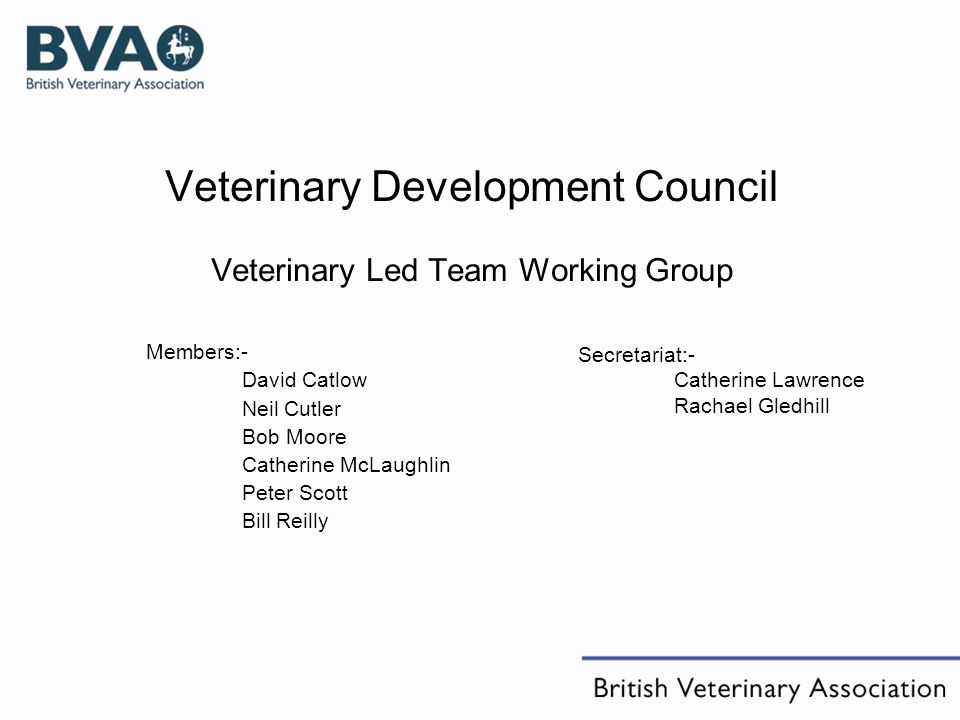 Veterinary Development Council Veterinary Led Team Working Group Members:- David Catlow Neil Cutler Bob Moore Catherine McLaughlin Peter Scott Bill Reilly Secretariat:- Catherine Lawrence Rachael Gledhill