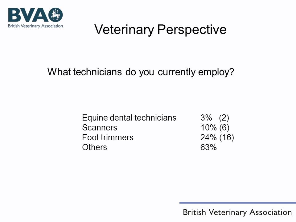 Equine dental technicians 3% (2) Scanners10% (6) Foot trimmers24% (16) Others63% What technicians do you currently employ.