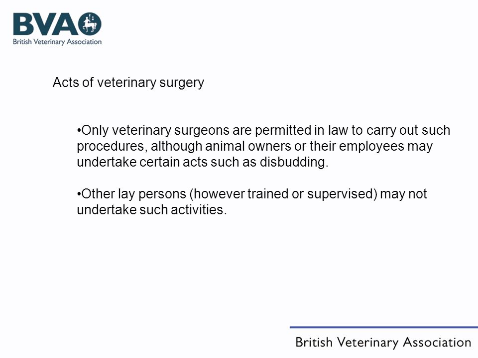 Acts of veterinary surgery Only veterinary surgeons are permitted in law to carry out such procedures, although animal owners or their employees may undertake certain acts such as disbudding.