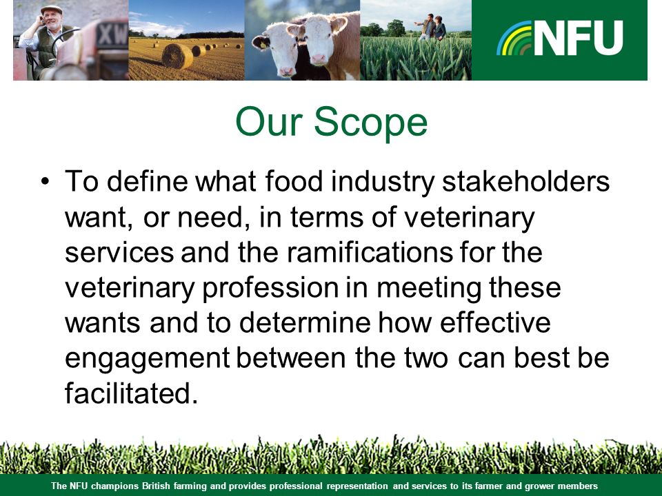 Our Scope To define what food industry stakeholders want, or need, in terms of veterinary services and the ramifications for the veterinary profession in meeting these wants and to determine how effective engagement between the two can best be facilitated.