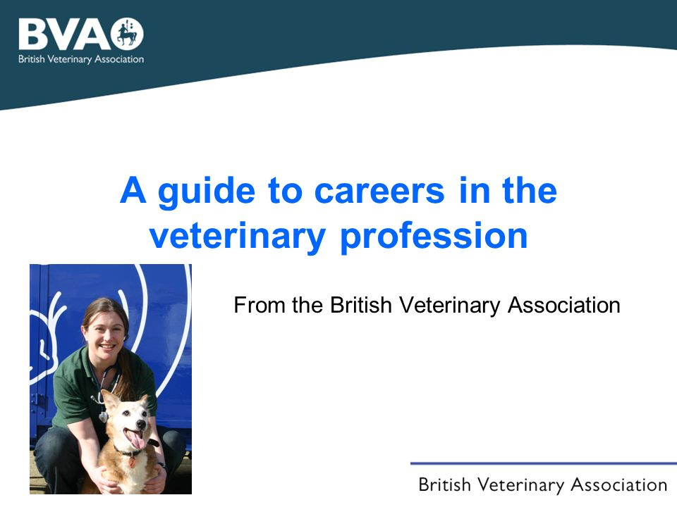 A guide to careers in the veterinary profession From the British Veterinary Association