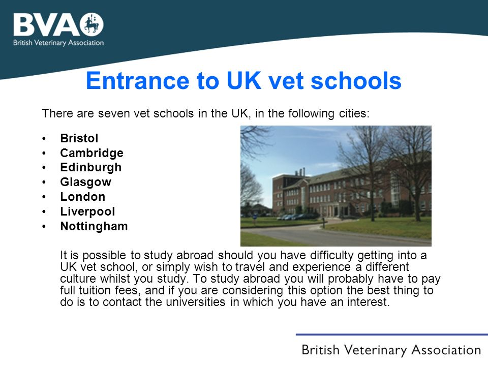 Entrance to UK vet schools There are seven vet schools in the UK, in the following cities: Bristol Cambridge Edinburgh Glasgow London Liverpool Nottingham It is possible to study abroad should you have difficulty getting into a UK vet school, or simply wish to travel and experience a different culture whilst you study.