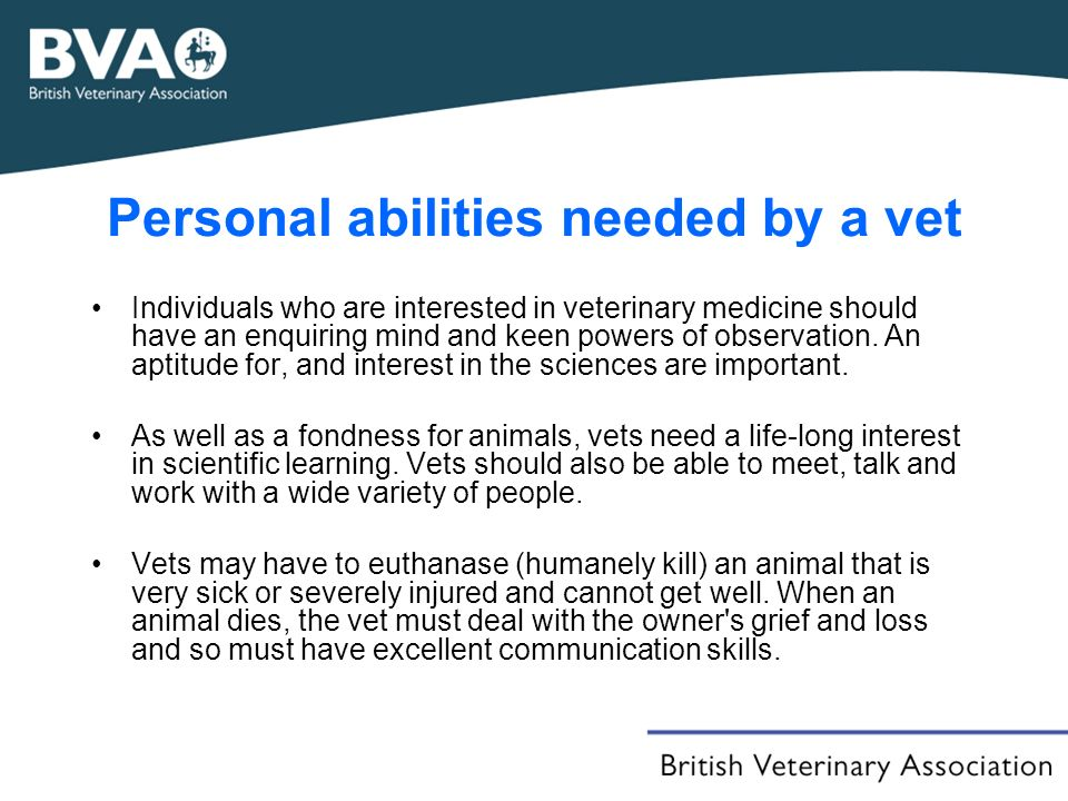 Personal abilities needed by a vet Individuals who are interested in veterinary medicine should have an enquiring mind and keen powers of observation.
