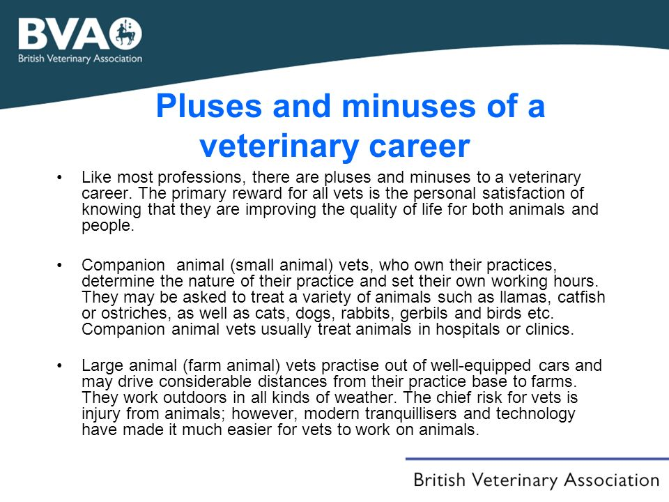 Pluses and minuses of a veterinary career Like most professions, there are pluses and minuses to a veterinary career.