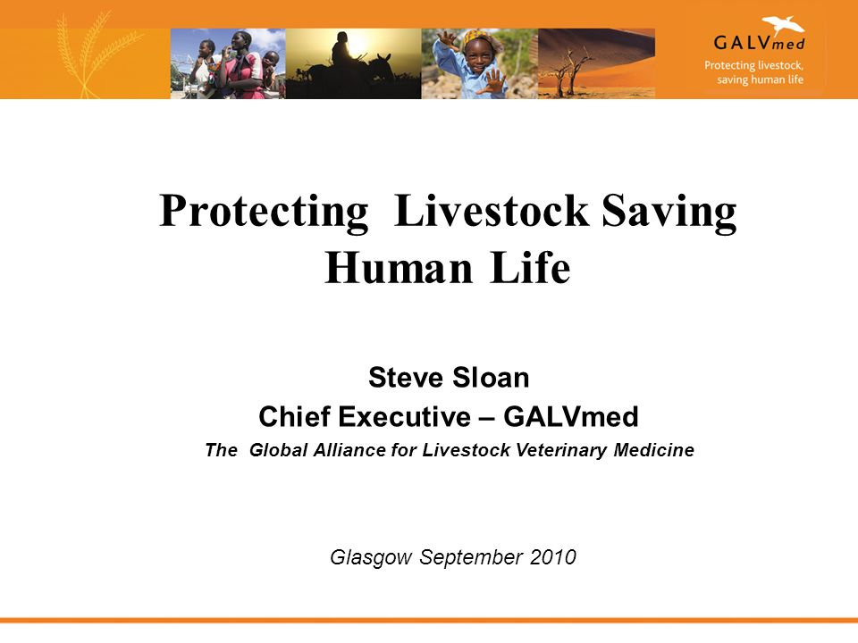 Steve Sloan Chief Executive – GALVmed The Global Alliance for Livestock Veterinary Medicine Protecting Livestock Saving Human Life Glasgow September 2010