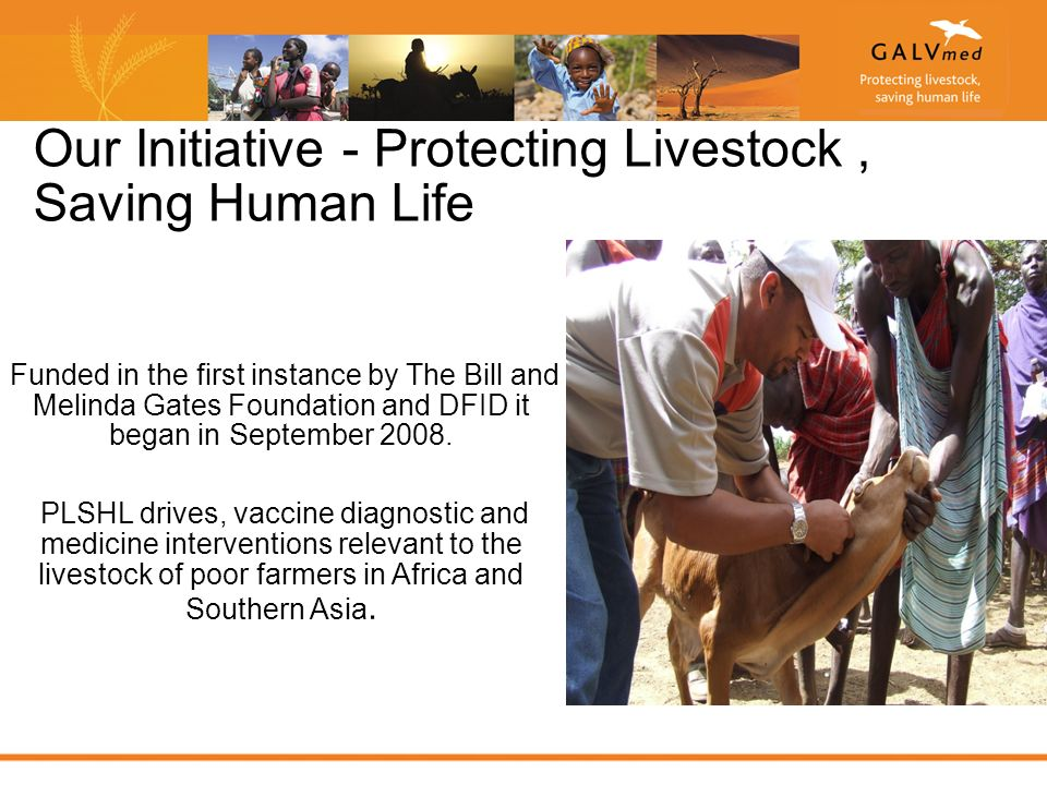 Our Initiative - Protecting Livestock, Saving Human Life Funded in the first instance by The Bill and Melinda Gates Foundation and DFID it began in September 2008.