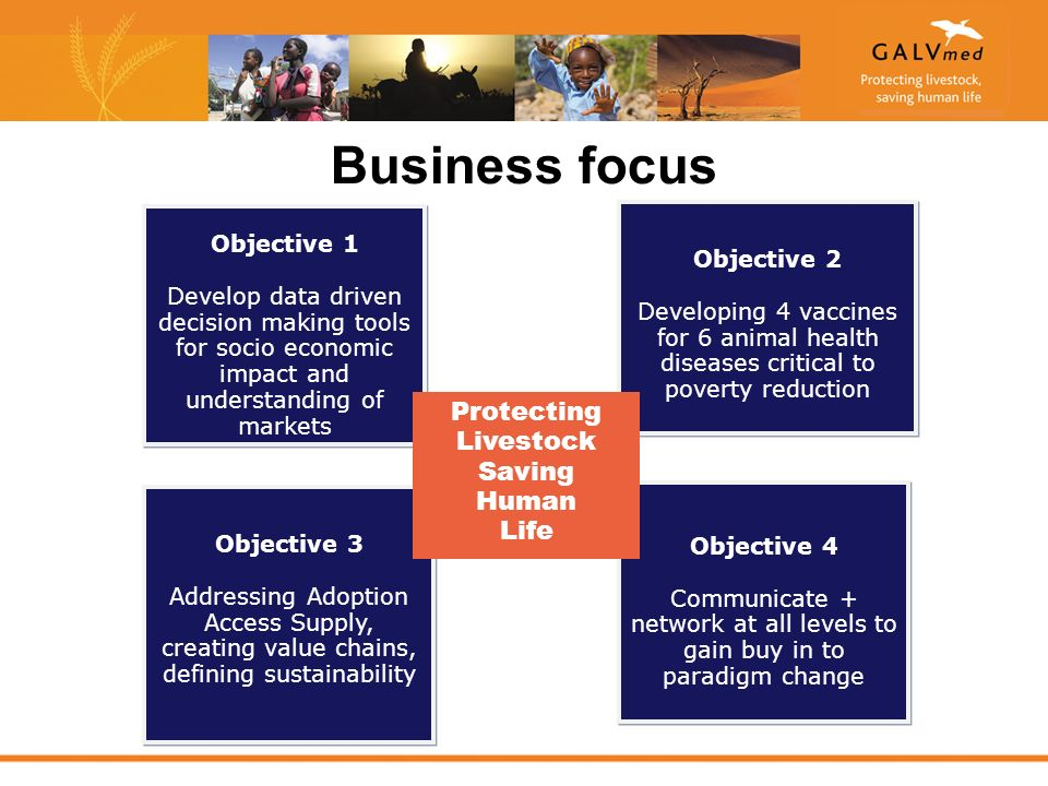 Business focus Objective 1 Develop data driven decision making tools for socio economic impact and understanding of markets Objective 1 Develop data driven decision making tools for socio economic impact and understanding of markets Objective 2 Developing 4 vaccines for 6 animal health diseases critical to poverty reduction Objective 2 Developing 4 vaccines for 6 animal health diseases critical to poverty reduction Objective 3 Addressing Adoption Access Supply, creating value chains, defining sustainability Objective 3 Addressing Adoption Access Supply, creating value chains, defining sustainability Objective 4 Communicate + network at all levels to gain buy in to paradigm change Objective 4 Communicate + network at all levels to gain buy in to paradigm change Protecting Livestock Saving Human Life