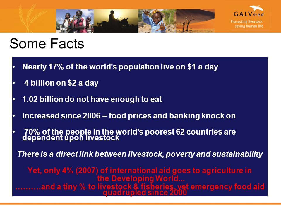 Some Facts Nearly 17% of the world s population live on $1 a day 4 billion on $2 a day 1.02 billion do not have enough to eat Increased since 2006 – food prices and banking knock on 70% of the people in the world s poorest 62 countries are dependent upon livestock There is a direct link between livestock, poverty and sustainability Yet, only 4% (2007) of international aid goes to agriculture in the Developing World...