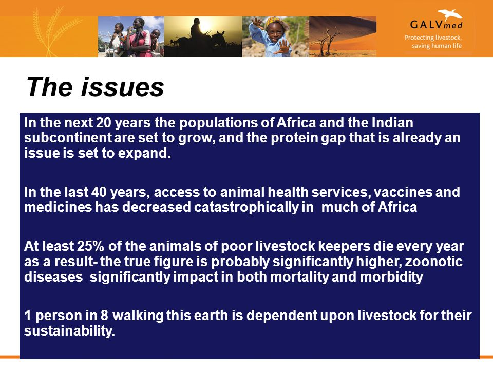 The issues In the next 20 years the populations of Africa and the Indian subcontinent are set to grow, and the protein gap that is already an issue is set to expand.