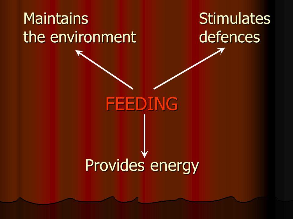 MaintainsStimulates the environmentdefences FEEDING FEEDING Provides energy
