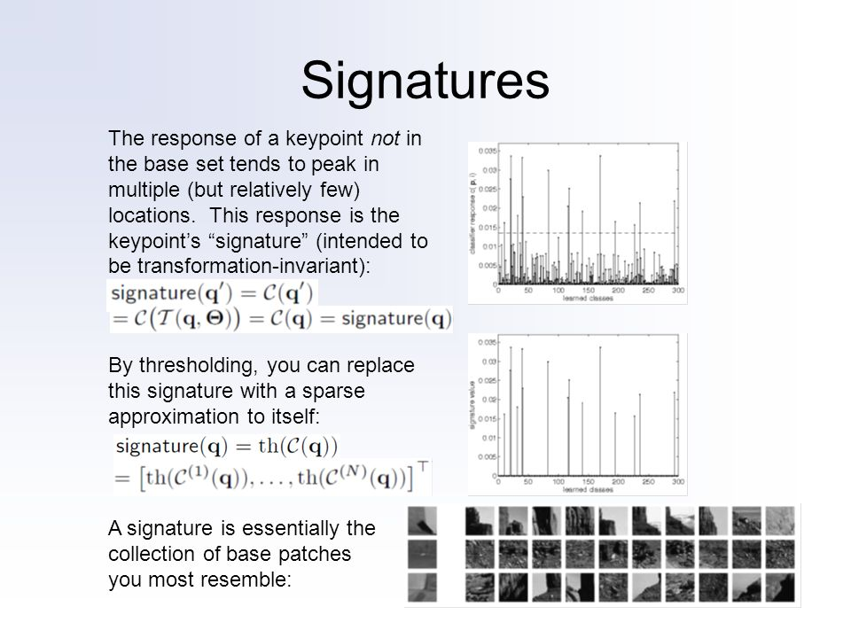 Signatures The response of a keypoint not in the base set tends to peak in multiple (but relatively few) locations. This response is the keypoints sig