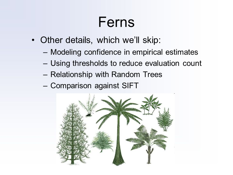 Ferns Other details, which well skip: –Modeling confidence in empirical estimates –Using thresholds to reduce evaluation count –Relationship with Random Trees –Comparison against SIFT
