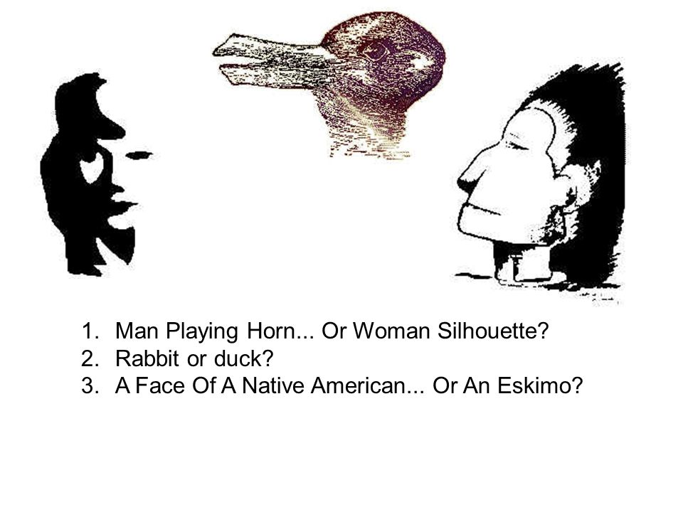 1.Man Playing Horn... Or Woman Silhouette? 2.Rabbit or duck? 3.A Face Of A Native American... Or An Eskimo?