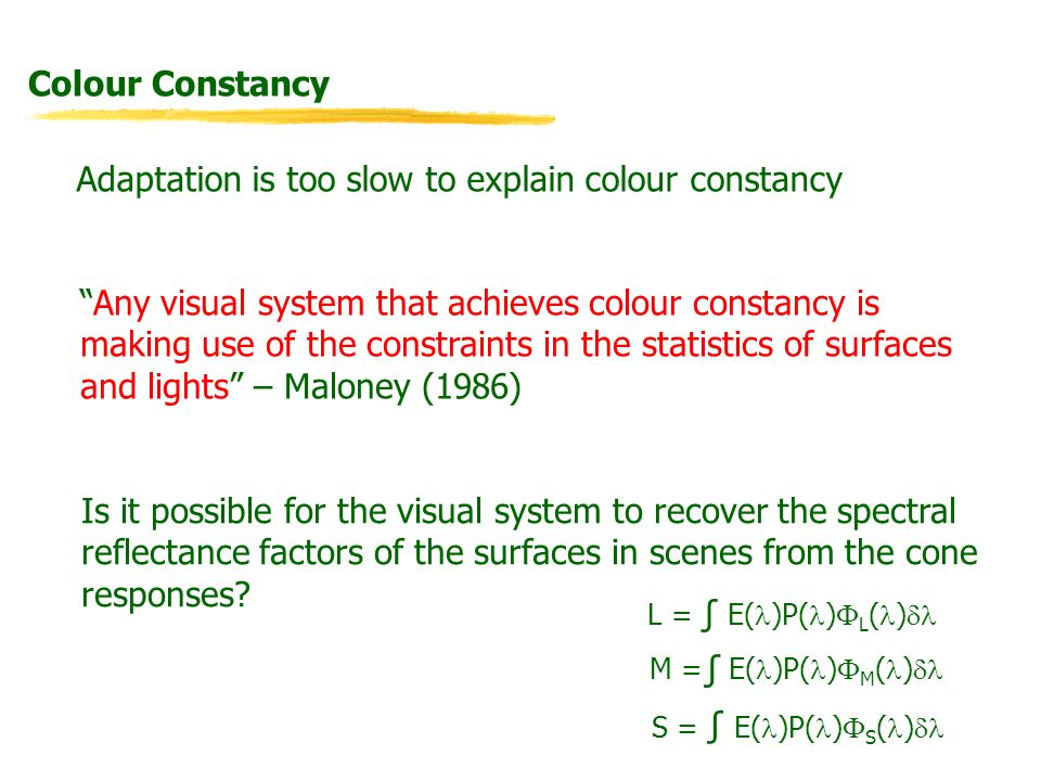 Colour Constancy Adaptation is too slow to explain colour constancy Any visual system that achieves colour constancy is making use of the constraints