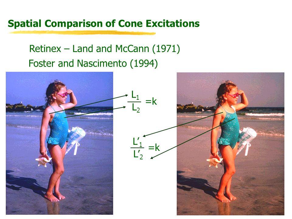 Spatial Comparison of Cone Excitations Retinex – Land and McCann (1971) Foster and Nascimento (1994) L1L1 L2L2 =k L1L1 L2L2