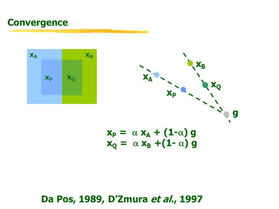 Da Pos, 1989, DZmura et al., 1997 xBxB xPxP xQxQ g xAxA xPxP xBxB xQxQ x P = x A + (1- ) g x Q = x B +(1- ) g xAxA Convergence