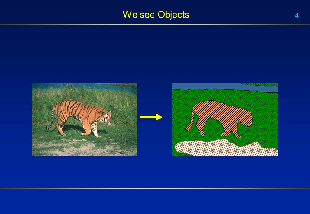 4 We see Objects
