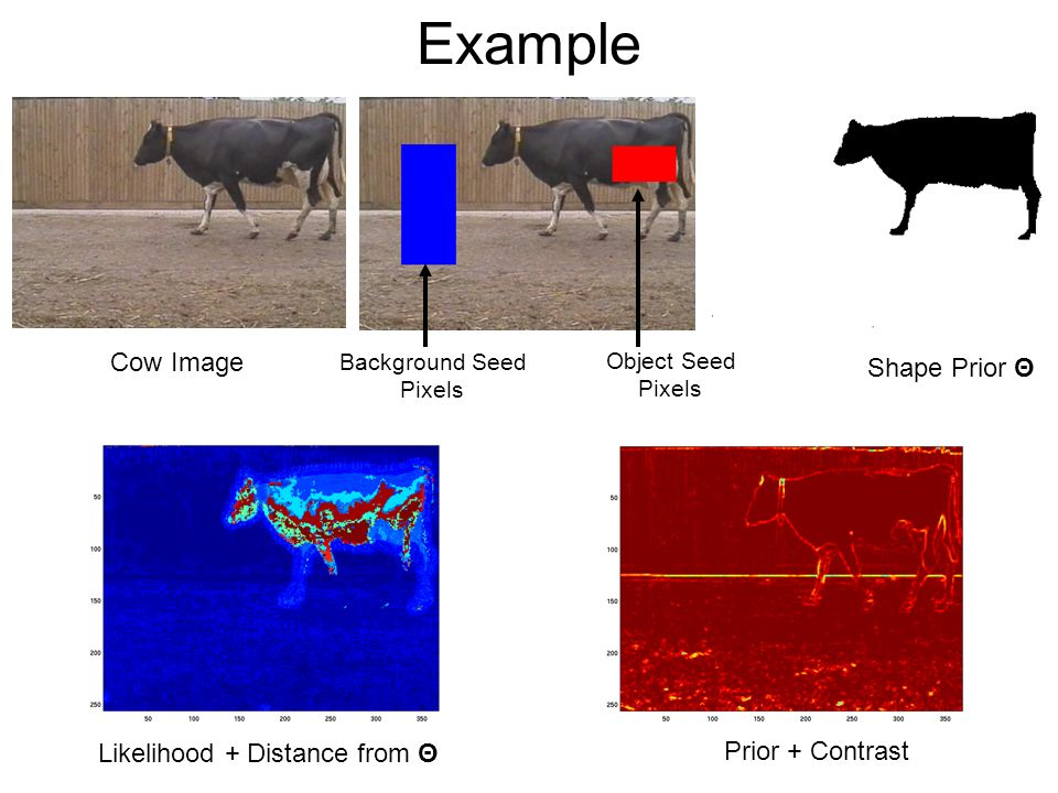 Example Cow Image Object Seed Pixels Background Seed Pixels Prior + Contrast Likelihood + Distance from Θ Shape Prior Θ