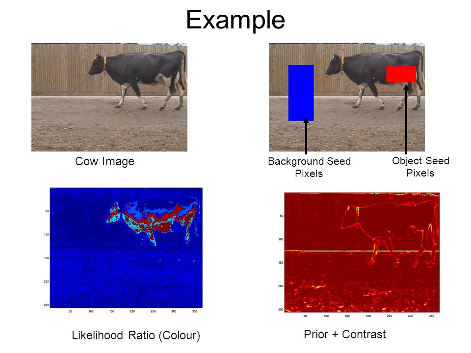 Example Cow Image Object Seed Pixels Background Seed Pixels Prior + Contrast Likelihood Ratio (Colour)