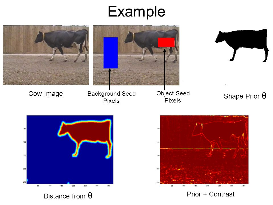 Example Cow Image Object Seed Pixels Background Seed Pixels Prior + Contrast Distance from Shape Prior