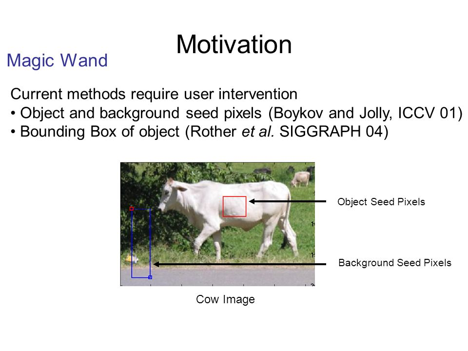 SegmentationImage Results Using LPS Model for Cow