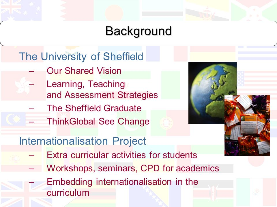 Background The University of Sheffield – Our Shared Vision – Learning, Teaching and Assessment Strategies – The Sheffield Graduate – ThinkGlobal See Change Internationalisation Project – Extra curricular activities for students – Workshops, seminars, CPD for academics – Embedding internationalisation in the curriculum