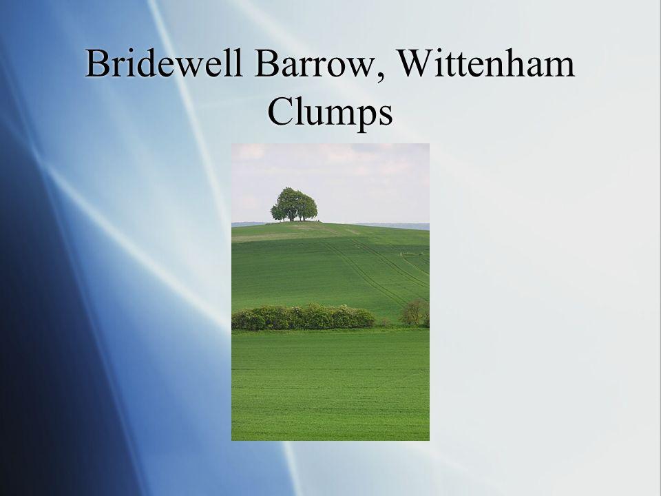 Bridewell Barrow, Wittenham Clumps