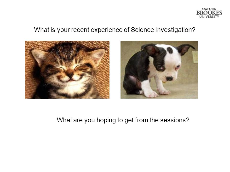 What is your recent experience of Science Investigation? What are you hoping to get from the sessions?