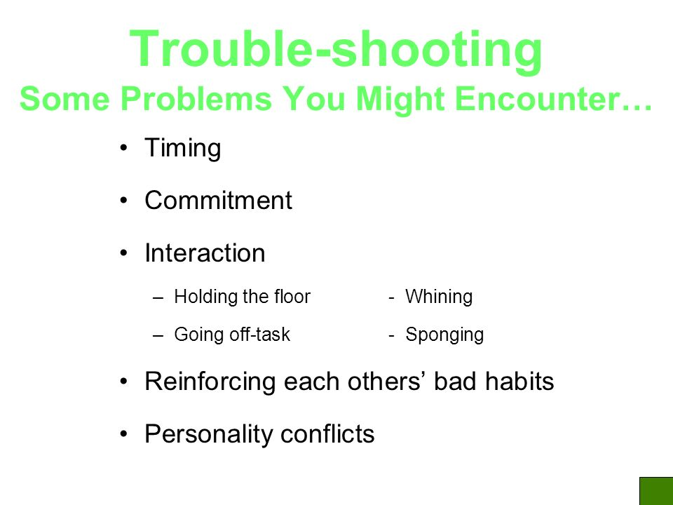Trouble-shooting Some Problems You Might Encounter… Timing Commitment Interaction –Holding the floor - Whining –Going off-task- Sponging Reinforcing each others bad habits Personality conflicts