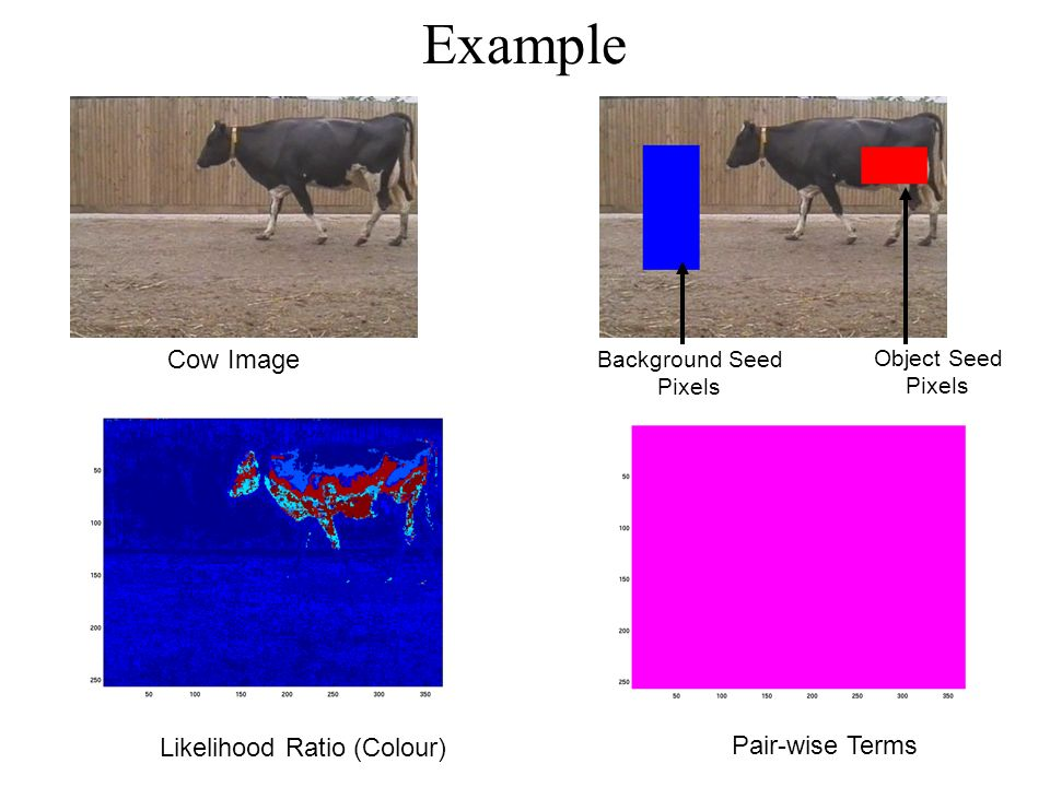 Example Cow Image Object Seed Pixels Background Seed Pixels Pair-wise Terms Likelihood Ratio (Colour)