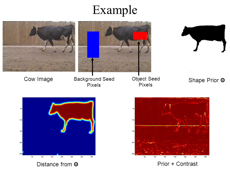 Example Cow Image Object Seed Pixels Background Seed Pixels Prior + Contrast Distance from Θ Shape Prior Θ