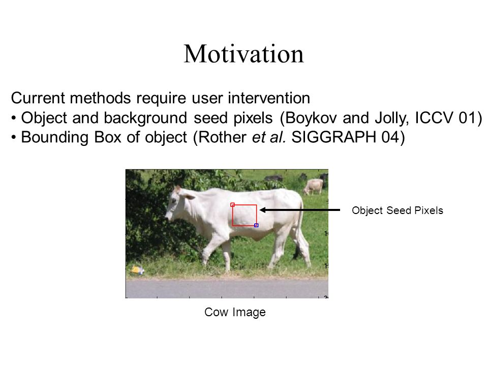 SegmentationImage Results Using LPS Model for Horse