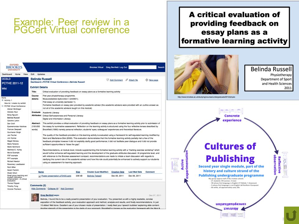 Example: Peer review in a PGCert Virtual conference
