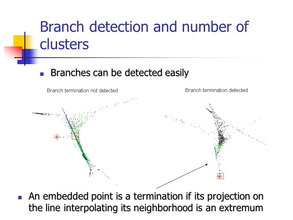 Branch detection and number of clusters Branches can be detected easily Branches can be detected easily An embedded point is a termination if its projection on the line interpolating its neighborhood is an extremum An embedded point is a termination if its projection on the line interpolating its neighborhood is an extremum