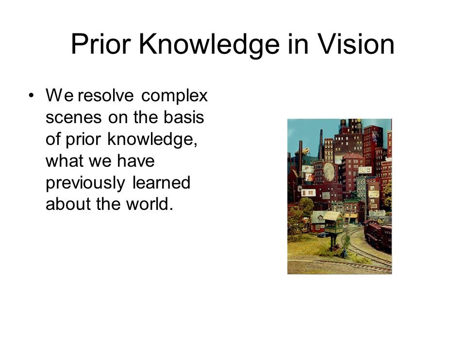 Prior Knowledge in Vision We resolve complex scenes on the basis of prior knowledge, what we have previously learned about the world.