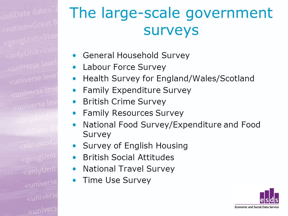 The large-scale government surveys General Household Survey Labour Force Survey Health Survey for England/Wales/Scotland Family Expenditure Survey British Crime Survey Family Resources Survey National Food Survey/Expenditure and Food Survey Survey of English Housing British Social Attitudes National Travel Survey Time Use Survey