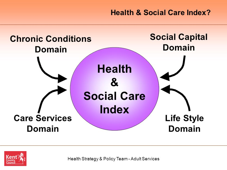 Health Strategy & Policy Team - Adult Services Health & Social Care Index Chronic Conditions Domain Social Capital Domain Life Style Domain Care Services Domain Health & Social Care Index