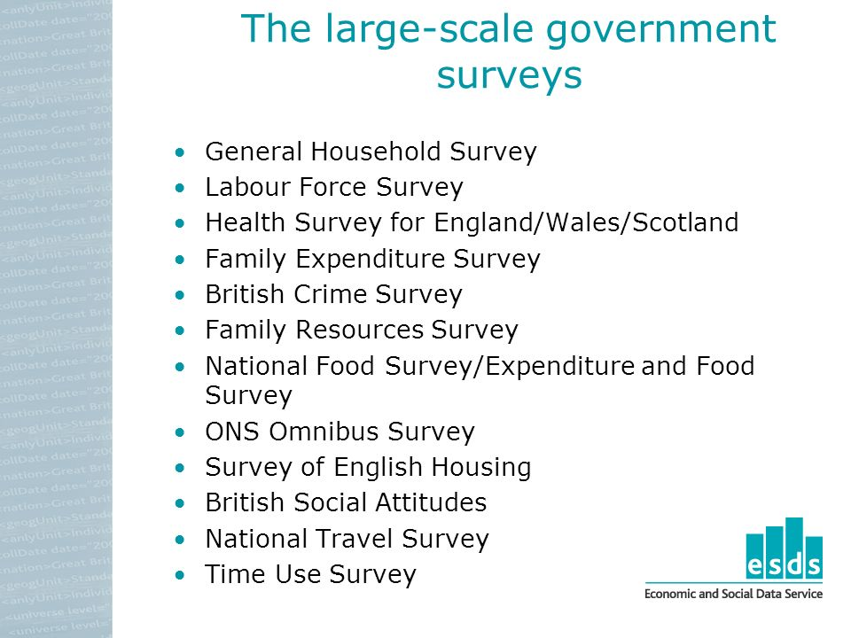 The large-scale government surveys General Household Survey Labour Force Survey Health Survey for England/Wales/Scotland Family Expenditure Survey British Crime Survey Family Resources Survey National Food Survey/Expenditure and Food Survey ONS Omnibus Survey Survey of English Housing British Social Attitudes National Travel Survey Time Use Survey