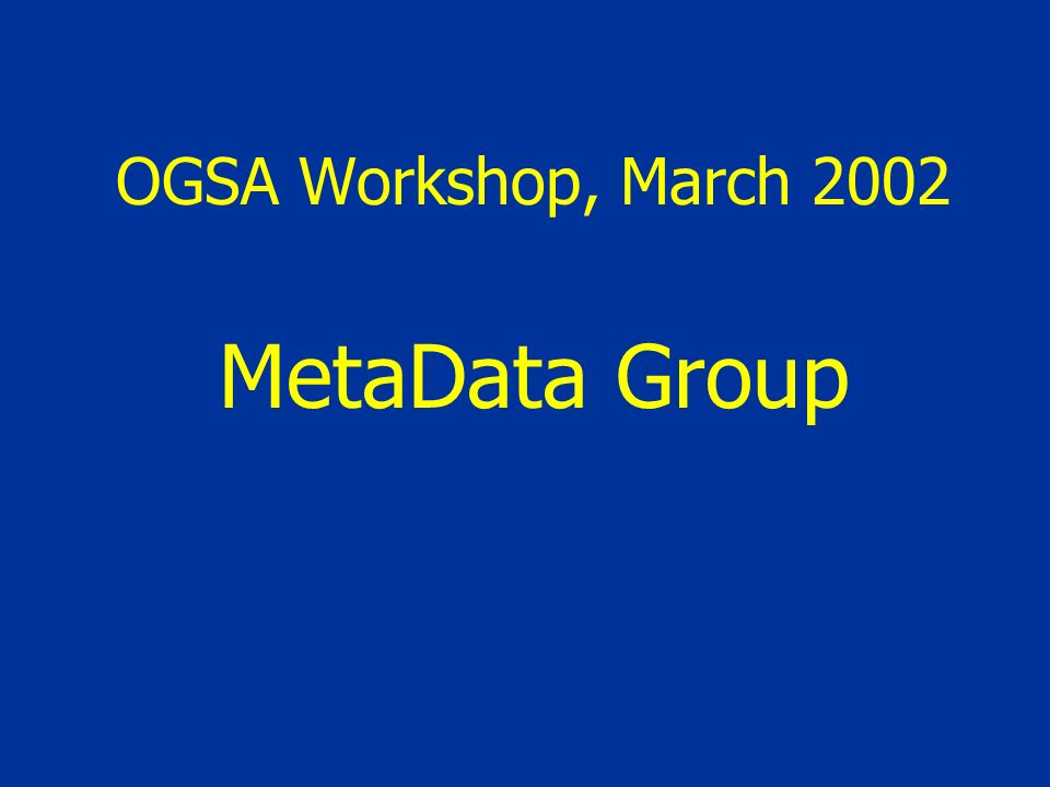 OGSA Workshop, March 2002 MetaData Group