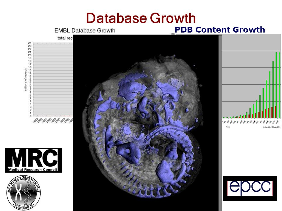 Database Growth PDB Content Growth