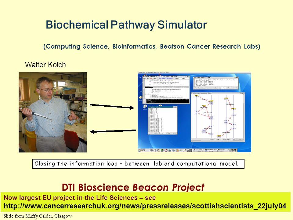 Biochemical Pathway Simulator (Computing Science, Bioinformatics, Beatson Cancer Research Labs) DTI Bioscience Beacon Project Harnessing Genomics Prog