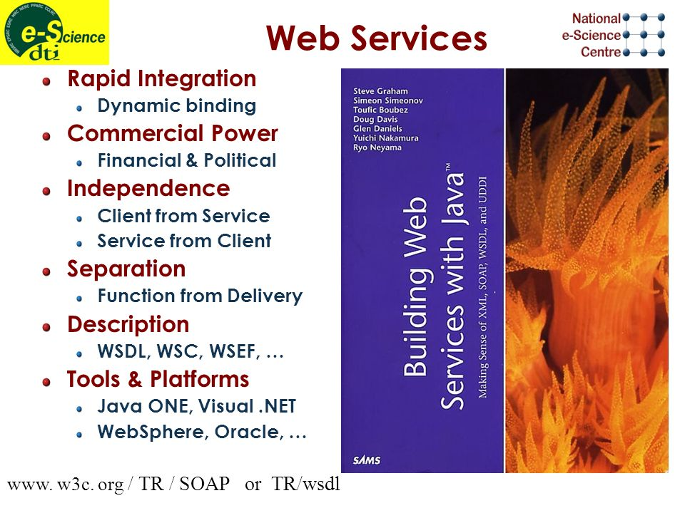 Web Services Rapid Integration Dynamic binding Commercial Power Financial & Political Independence Client from Service Service from Client Separation