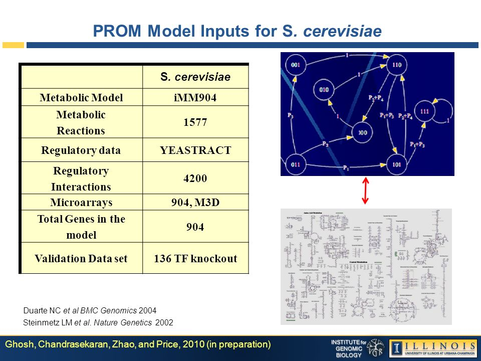 INSTITUTE for GENOMICBIOLOGY PROM Model Inputs for S.