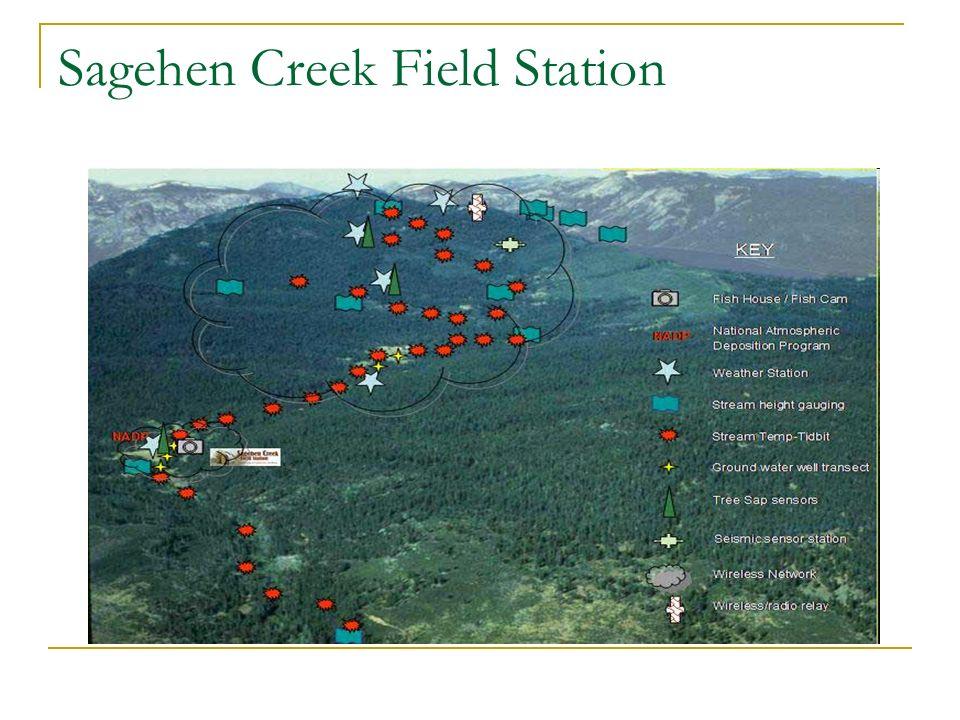 Sagehen Creek Field Station