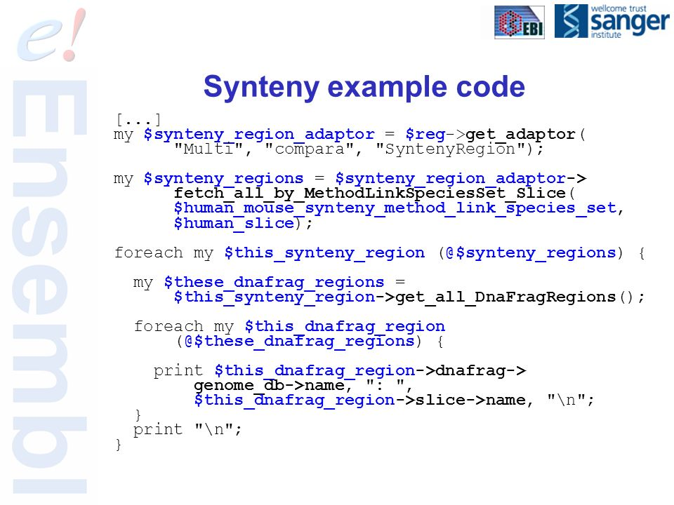 Synteny example code [...] my $synteny_region_adaptor = $reg->get_adaptor( Multi , compara , SyntenyRegion ); my $synteny_regions = $synteny_region_adaptor-> fetch_all_by_MethodLinkSpeciesSet_Slice( $human_mouse_synteny_method_link_species_set, $human_slice); foreach my $this_synteny_region (@$synteny_regions) { my $these_dnafrag_regions = $this_synteny_region->get_all_DnaFragRegions(); foreach my $this_dnafrag_region (@$these_dnafrag_regions) { print $this_dnafrag_region->dnafrag-> genome_db->name, : , $this_dnafrag_region->slice->name, \n ; } print \n ; }