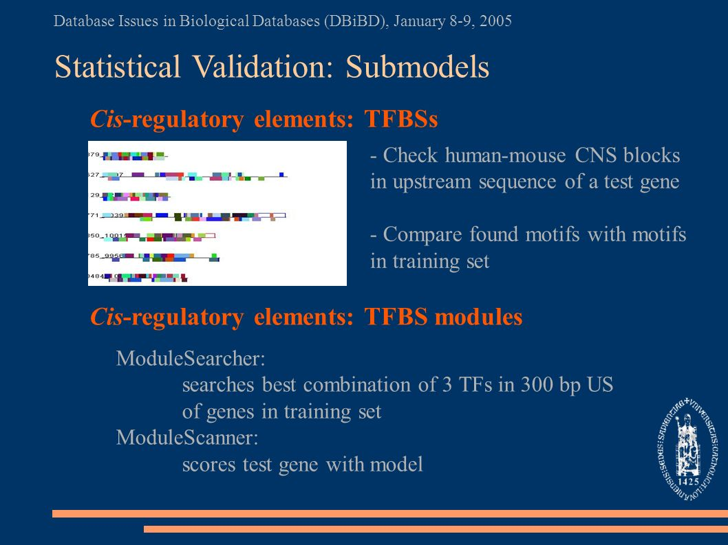 Database Issues in Biological Databases (DBiBD), January 8-9, 2005 Statistical Validation: Submodels Cis-regulatory elements: TFBSs Cis-regulatory elements: TFBS modules - Check human-mouse CNS blocks in upstream sequence of a test gene - Compare found motifs with motifs in training set ModuleSearcher: searches best combination of 3 TFs in 300 bp US of genes in training set ModuleScanner: scores test gene with model