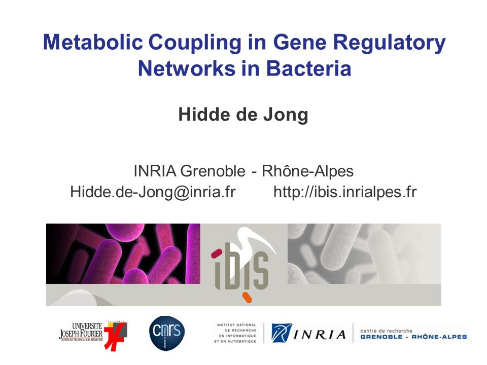Metabolic Coupling in Gene Regulatory Networks in Bacteria Hidde de Jong INRIA Grenoble - Rhône-Alpes Hidde.de-Jong@inria.fr http://ibis.inrialpes.fr